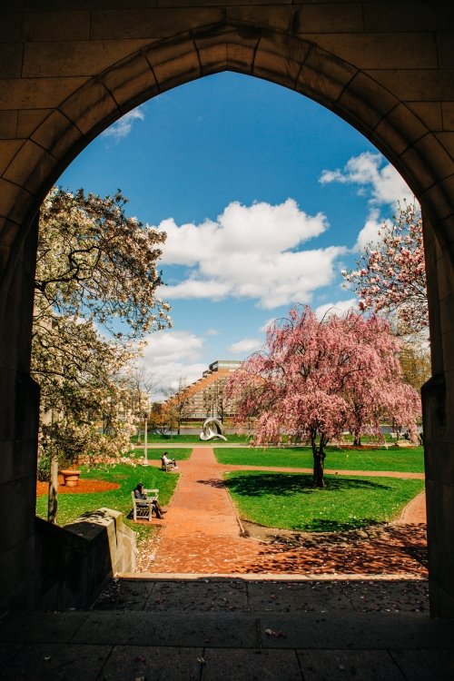 4/24/19 -- Boston, Massachusetts Spring campus stock photography. Photo by Janice Checchio for Boston University Photography